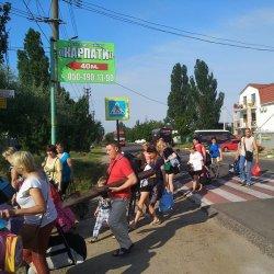 Гнатчуки, Київ